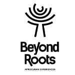 Beyond-Roots